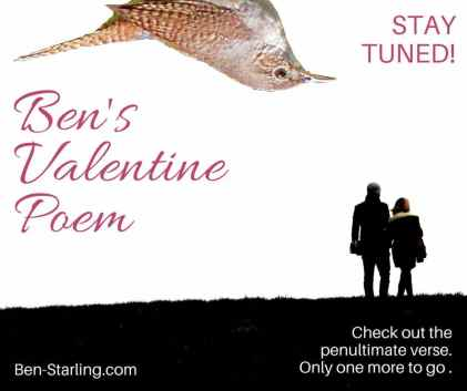 Ben's Valentine Poem 13FEB16