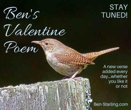 Ben's Valentine Poem_9FEB16