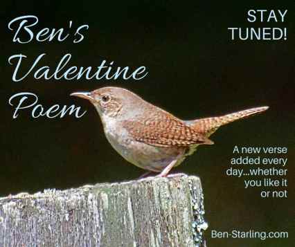 Ben's Valentine Poem_9FEB16
